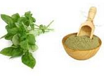 tulsi for hair care